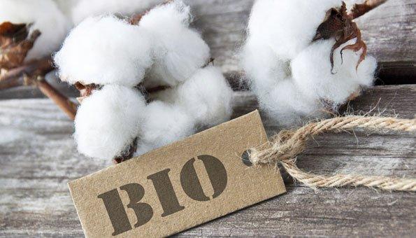 Bio Baumwolle – Wieso wir ausschießlich Biobaumwolle für unsere Schals, Tücher und Kissen verwenden