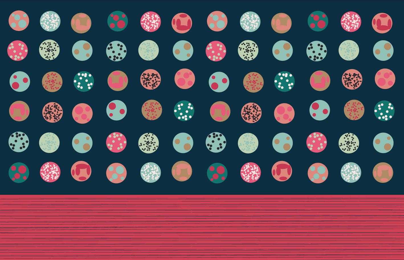 Kissen mit Print Onigiri in 30 x 20 Biobaumwolle digital bedruckt